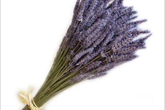 Lavender, dried